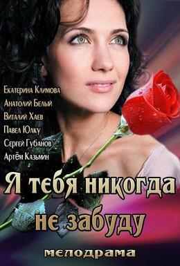 Постер фильма Я тебя никогда не забуду (2013)