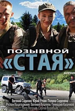 Постер фильма Позывной Стая (2013)