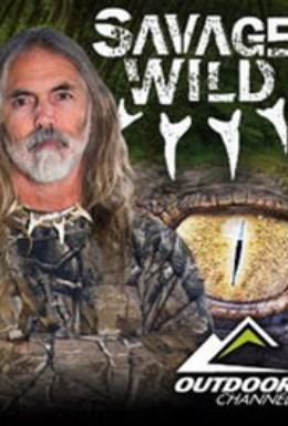 Постер фильма Опасность в дикой природе (2011)