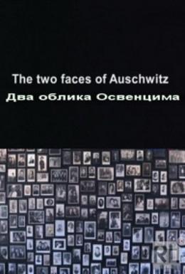 Постер фильма Два облика Освенцима (2011)