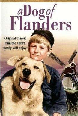 Постер фильма Пес из Фландрии (1959)