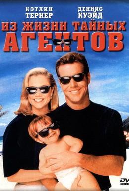 Постер фильма Из жизни тайных агентов (1993)