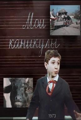 Постер фильма Мои каникулы (1973)