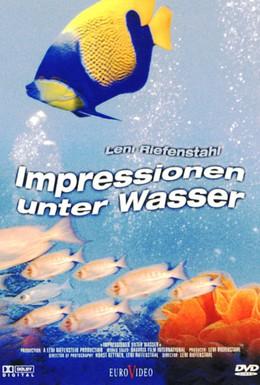 Постер фильма Коралловый рай (2002)