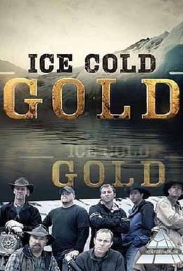 Постер фильма Ледяное золото (2013)