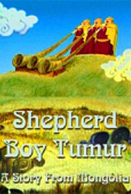 Постер фильма Пастушок Тумур (2001)