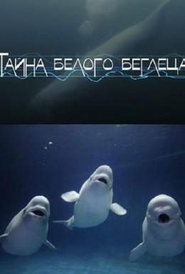 Постер фильма Тайна белого беглеца (2012)