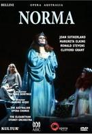 Норма (1978)