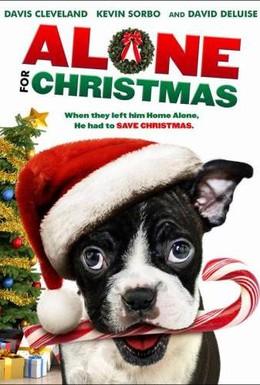 Постер фильма Одни на Рождество (2013)