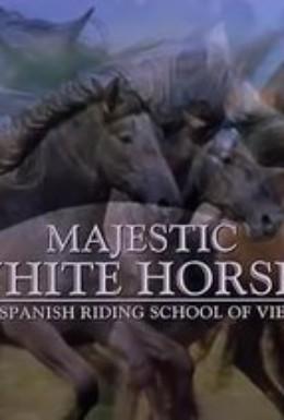 Постер фильма Королевские белые лошади (2001)
