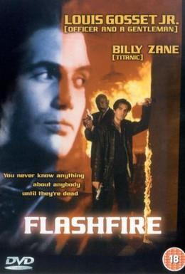 Постер фильма Хищный огонь (1994)