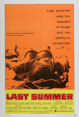 Постер фильма Последнее лето (1969)