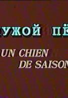 Чужой пёс (1981)