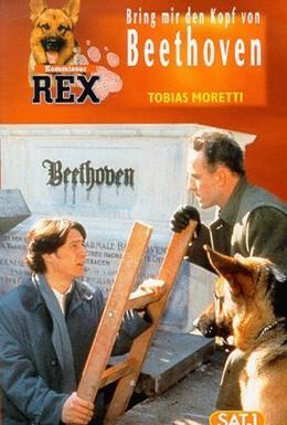 Постер фильма Комиссар Рекс (1999)