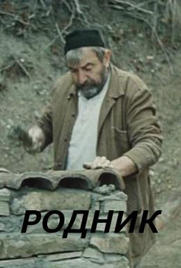 Постер фильма Родник (1973)