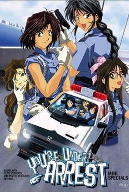 Постер фильма Вы арестованы (1996)