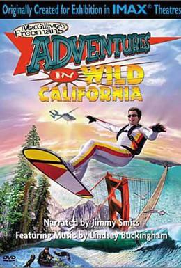 Постер фильма Приключения в дикой Калифорнии (2000)