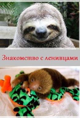 Постер фильма Познакомьтесь с русскими (2013)