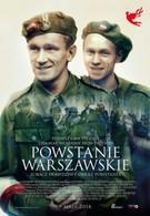 Варшавское восстание (2014)