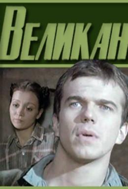 Постер фильма Великан (1984)