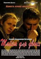 Тайна для двоих (2011)