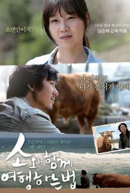 Постер фильма Как путешествовать с быком (2010)