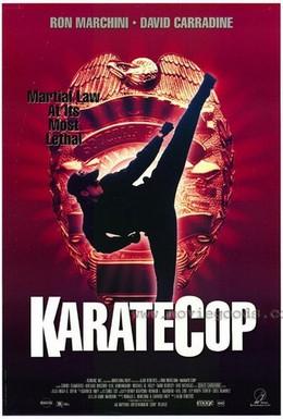 Постер фильма Полицейский-каратист (1991)
