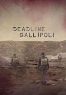 Галлиполийская история (2015)