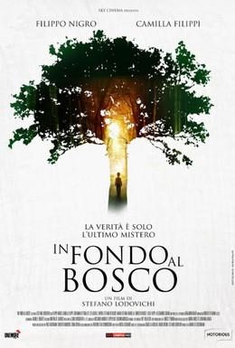 Постер фильма В глубине леса (2015)
