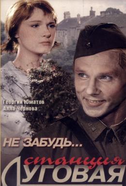 Постер фильма Не забудь... станция Луговая (1966)
