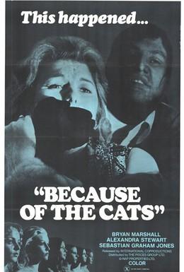 Постер фильма Из-за кошек (1973)