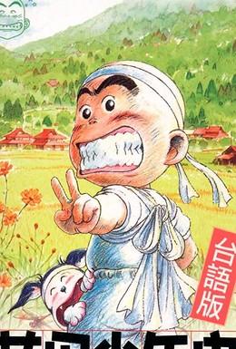 Постер фильма История юного Ханады (2002)