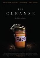 Мастер очистки (2016)