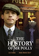 История мистера Полли (2007)