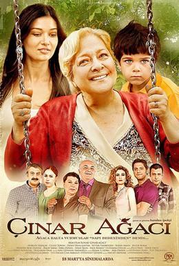 Постер фильма Чинара (2011)