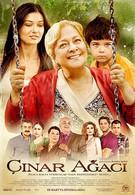Чинара (2011)