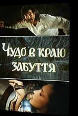 Постер фильма Чудо в краю забвения (1991)