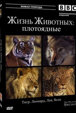 Постер фильма Студенческая жизнь (1997)