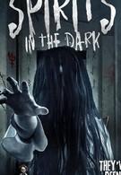 Spirits in the Dark (2020)