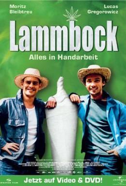 Постер фильма Ламмбок – всё ручной работы (2001)