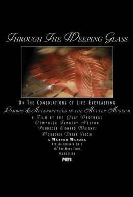 Постер фильма Сквозь плачущее стекло (2011)