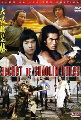 Постер фильма Секрет столбов Шаолиня (1977)
