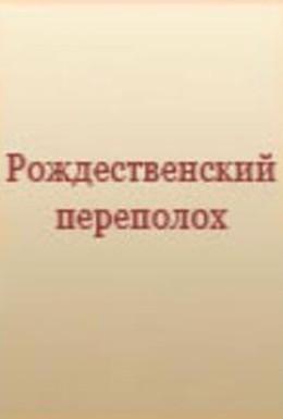 Постер фильма Рождественский переполох (1993)