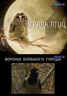 Страна птиц (2011)