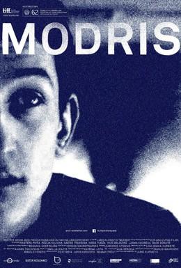 Постер фильма Модрис (2014)