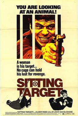 Постер фильма Сидячая цель (1972)