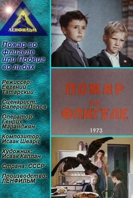 Постер фильма Пожар во флигеле, или Подвиг во льдах (1973)