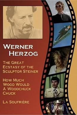 Постер фильма Великий экстаз резчика по дереву Штайнера (1974)