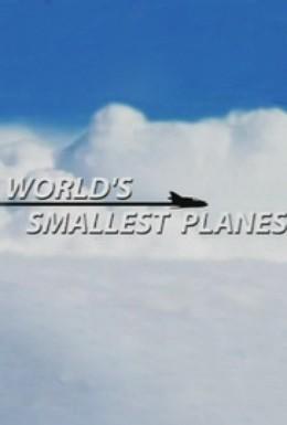 Постер фильма Самые маленькие самолеты в мире (2007)