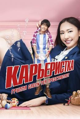 Постер фильма Карьеристка (2011)
